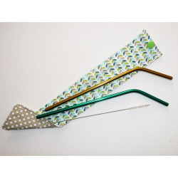 2 reusable washable stainless steel straws case and GREEN bottle brush