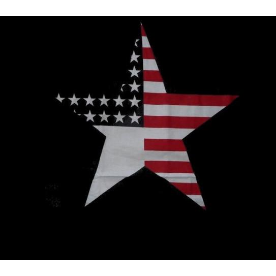 Taie d'oreiller AMERICAN STAR