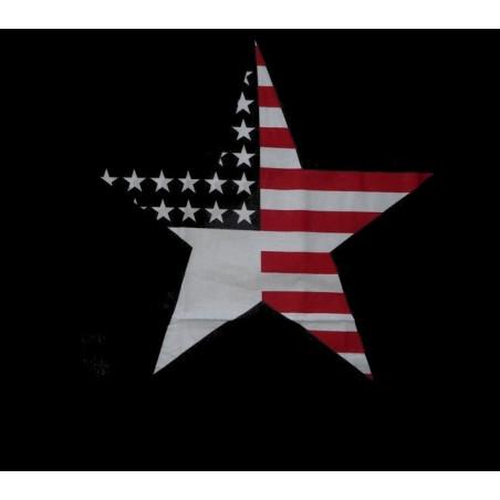 Funda de almohada American Star